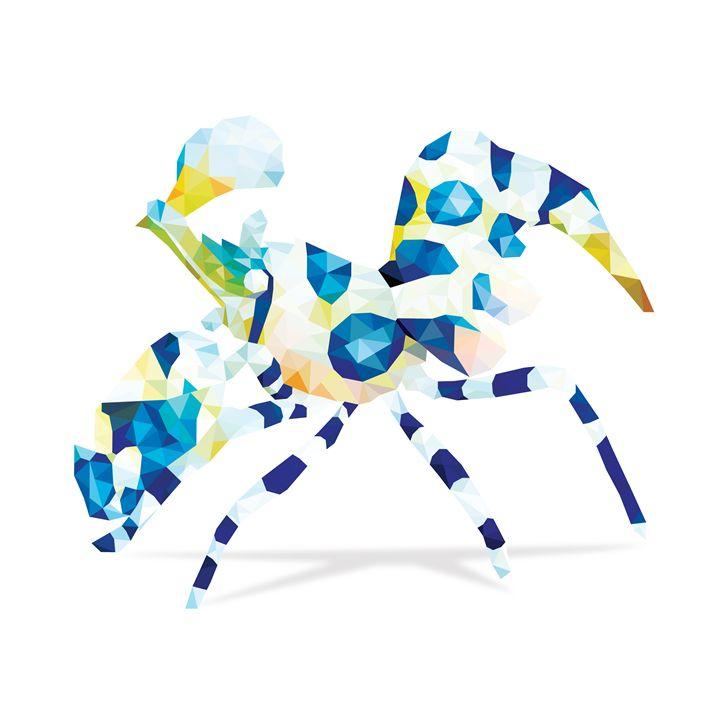 Geometric Abstract Harlequin Shrimp - Aquanaut Studio