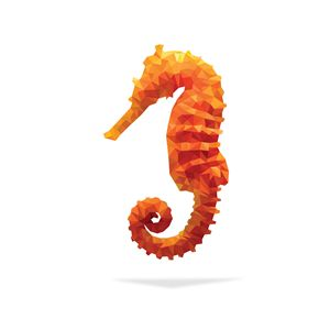 Geometric Abstract Seahorse