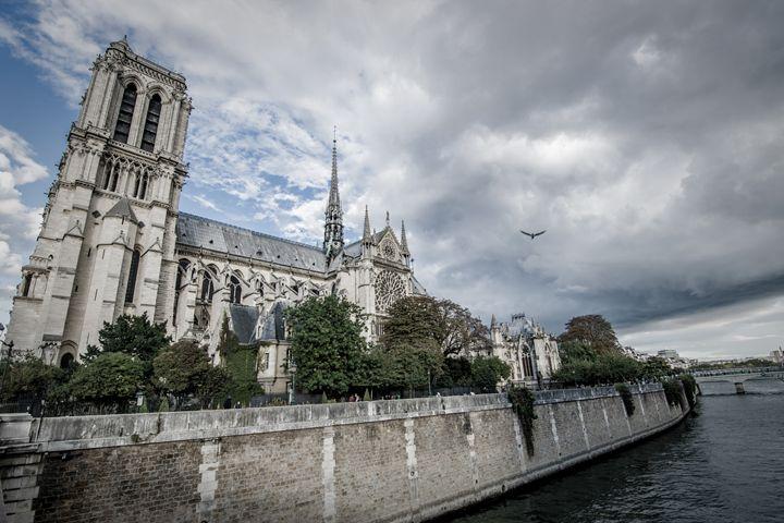Wide Notre Dame - Daniel San