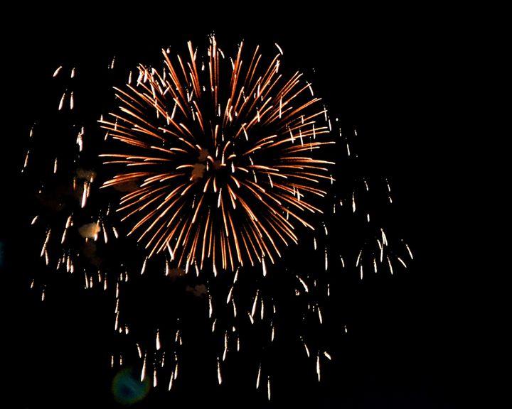 Firework - Gabbys Art