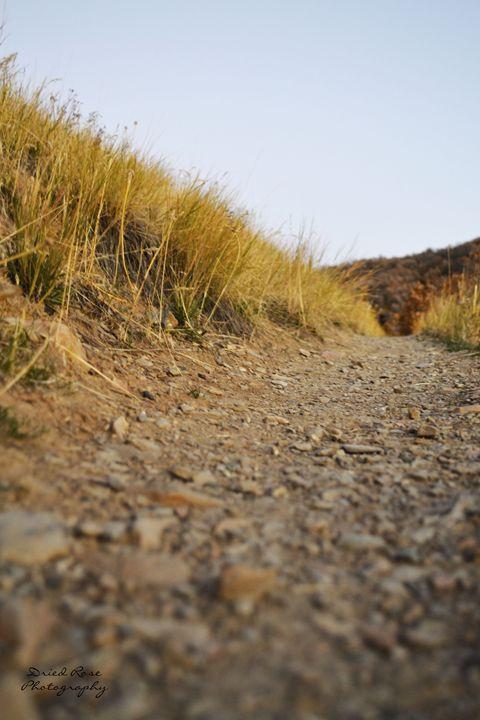 Lonely Road - Gabbys Art