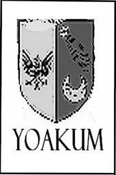 Allen Yoakum Art