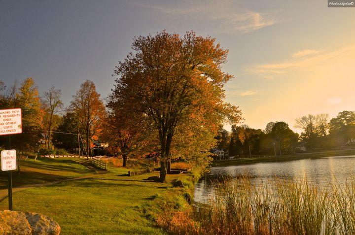 Lake Carmel Color 2013 - PhotosbyNan