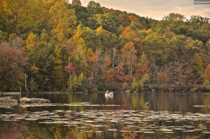 Fall at White Pond - PhotosbyNan