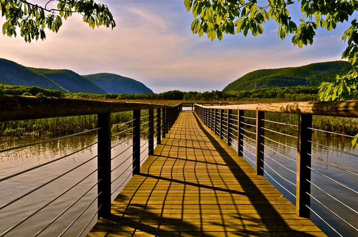 Constitution Marsh, Cold Spring, NY - PhotosbyNan