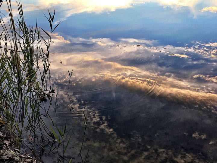 Reflections - PhotosbyNan