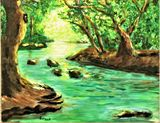 A creek deep in a lush forest