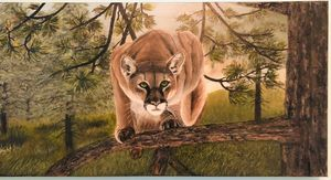 Cougar On Alert