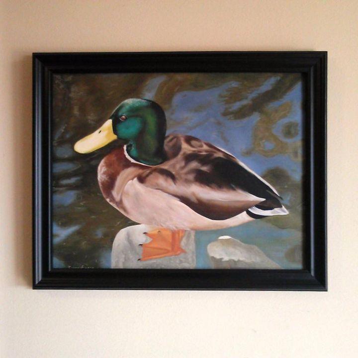 Mallard Duck - Ubiquity|Arts