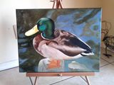 16x14 oil painting of a duck