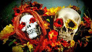 Dia Los Muertos Skulls