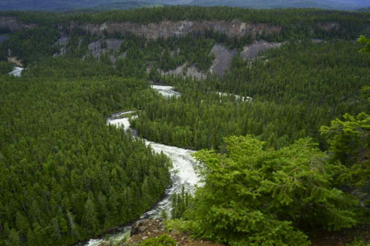 River Valley - Jean Macaluso Fine Art