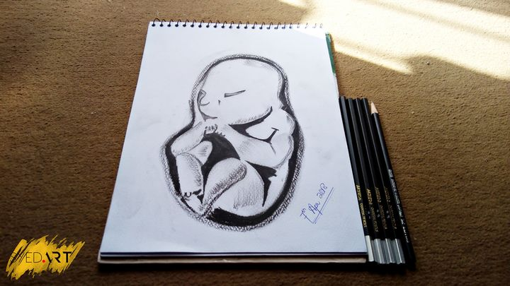 Baby inside Womb - Syed Art