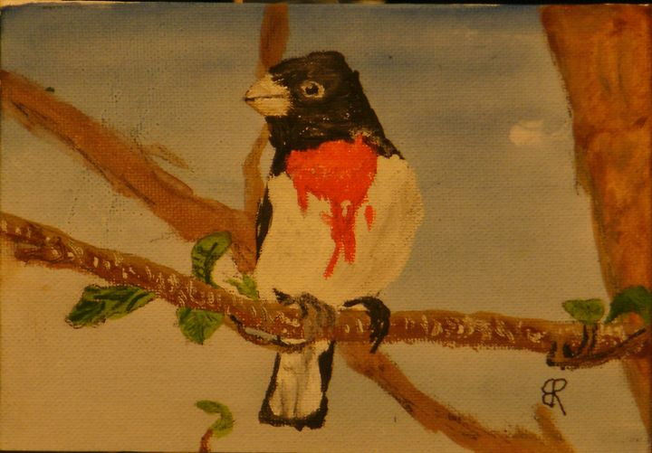 Red Breasted Grossbeak - Brents Art
