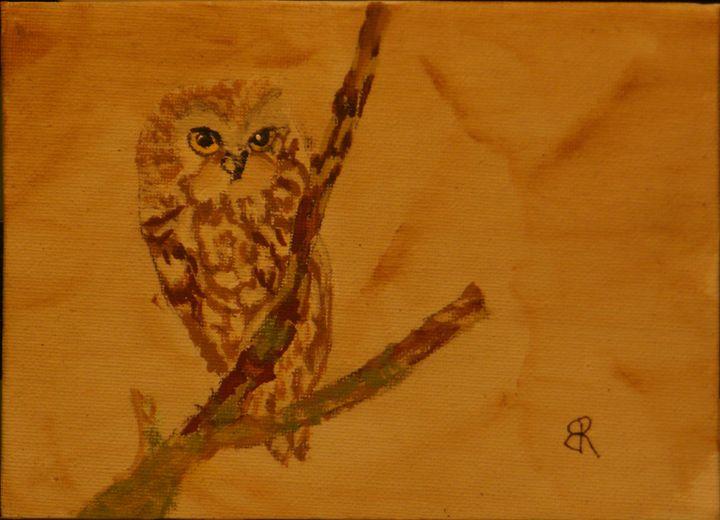 Saw-Whet Owl - Brents Art