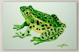 Fish Seven (frog)