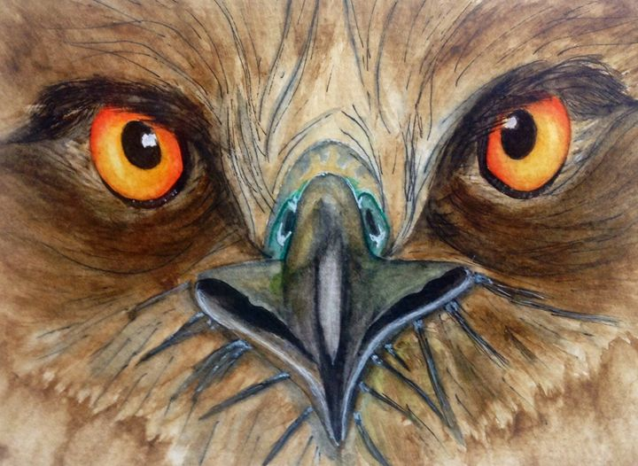 Bird of Prey - Watercolors by Alie