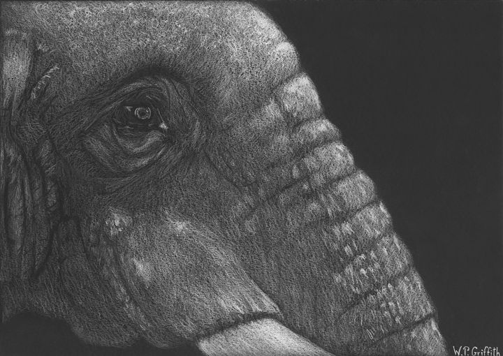 Wild Wisdom / Elephant - WP Griffith
