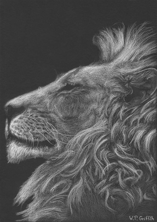 Wild wisdom / Lion - WP Griffith