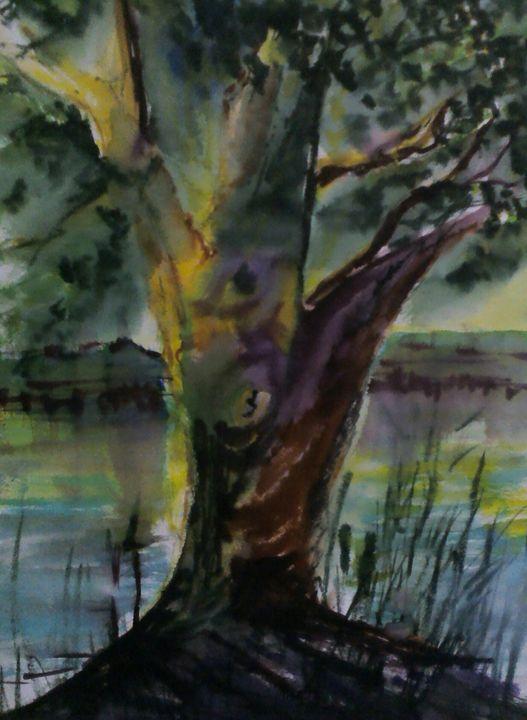 Tree in a dream - PaulRowe