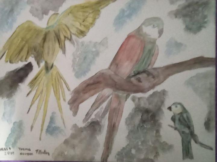 birds 1 - themistoklis1