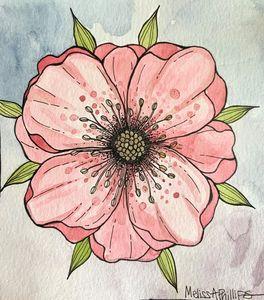 Dogwood Rose
