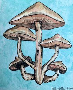 mushroomies