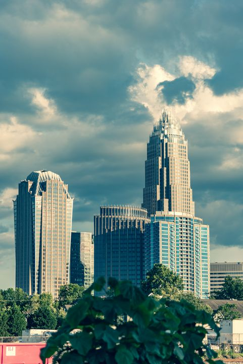 A Day in Uptown Charlotte, NC - D.N.S.Photography