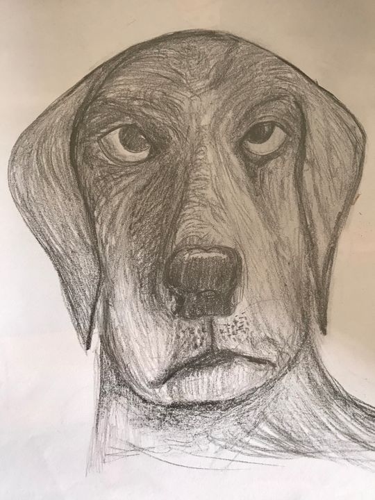 Weary dog - Pargat
