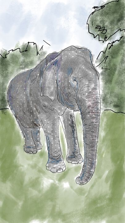 Asian Elephant - Naughty Dogs Studio