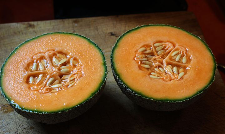 Melon to Share - Scott Carlton Photos