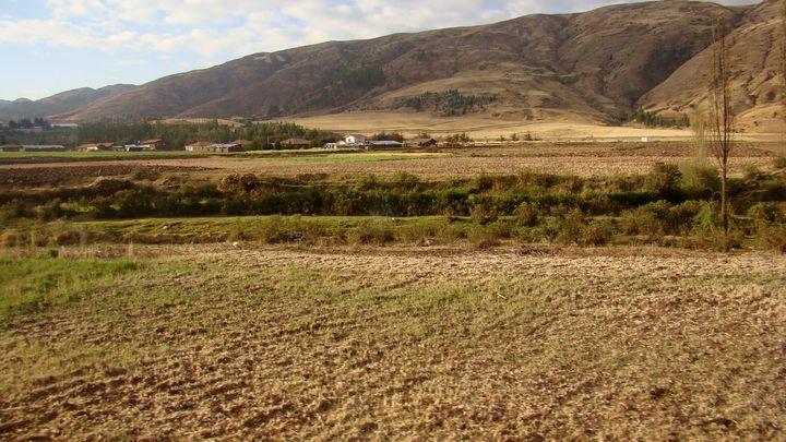Field in Aguas Calientes Peru - Jleopold