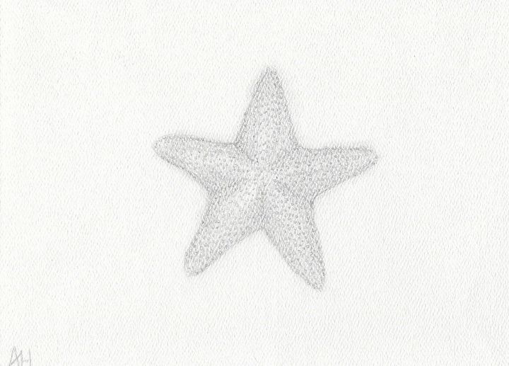 Hand-Drawn Starfish - HatfieldArts
