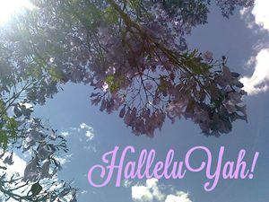 HalleluYah - HalleluYAH Art