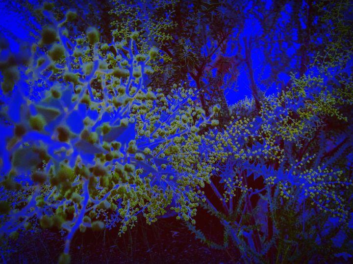 Green fractals - Innovatoin