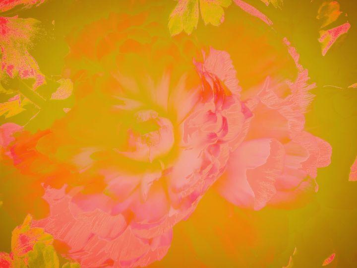 Flurry bloom - Innovatoin
