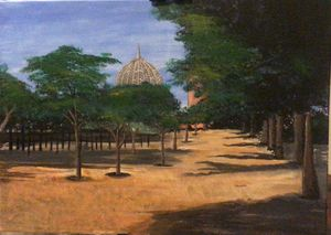 Trees and shadows with mosque dome