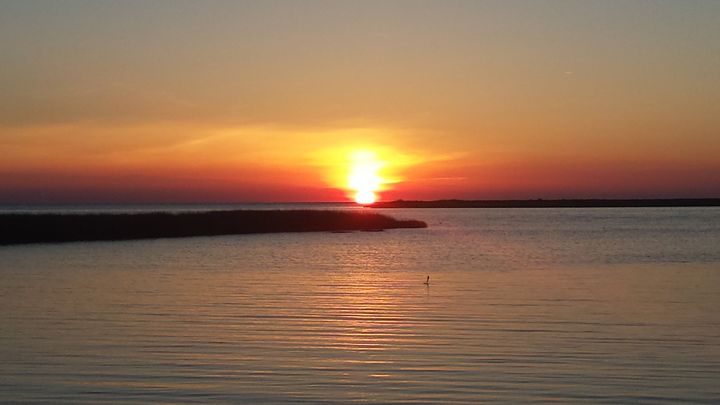 Sunset Perfection - Obstructive Artist