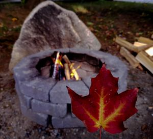 Campfire Leaves