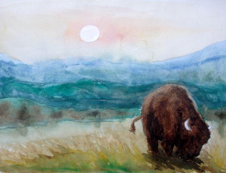 Buffalo grazing - BLitts