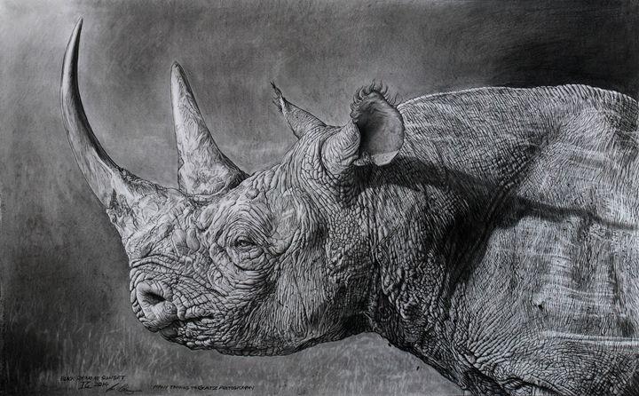 Black rhino at sunset - Vortiko_FineArt