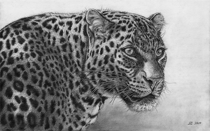 Leopard Portrait - Vortiko_FineArt