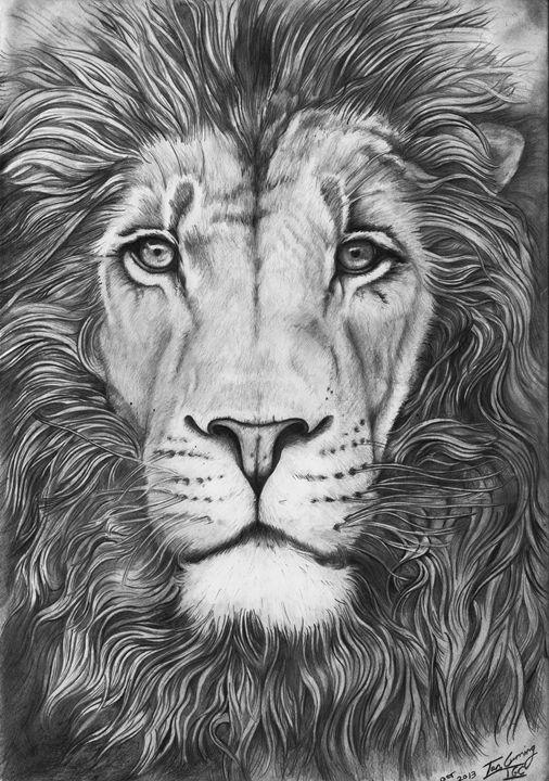 Male Lion Portrait Vortikofineart Drawings