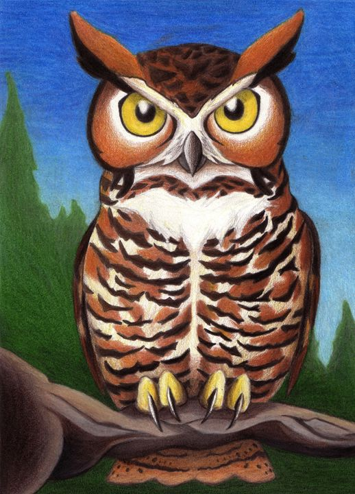 Great Horned Owl Perched - Susan Whidden Illustrations