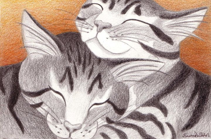 Two Stripy Sisters - Susan Whidden Illustrations
