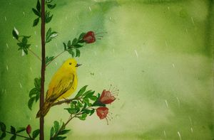 The Yellow Warbler - Kumar Guarav