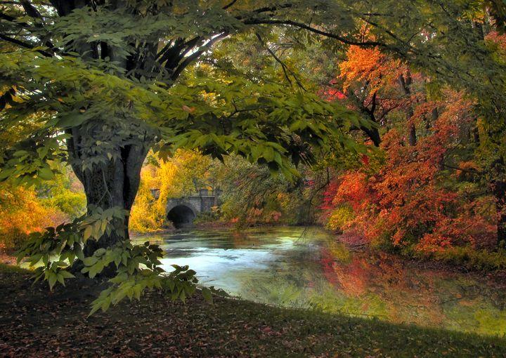 Autumn Reverie - Jessica Jenney Photography