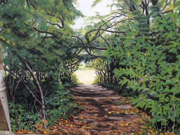 A woodland walk - Susan craker