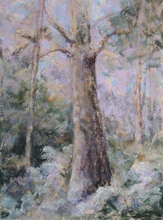 Winter Fantasy - B_Rossitto.com
