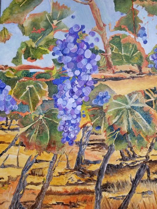 Vineyard Scene - Anita Bischoff
